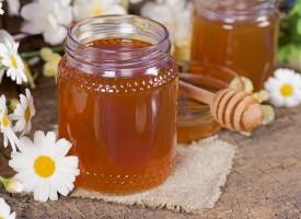 La miel y sus propiedades: antibiótico natural y edulcorante para deportistas