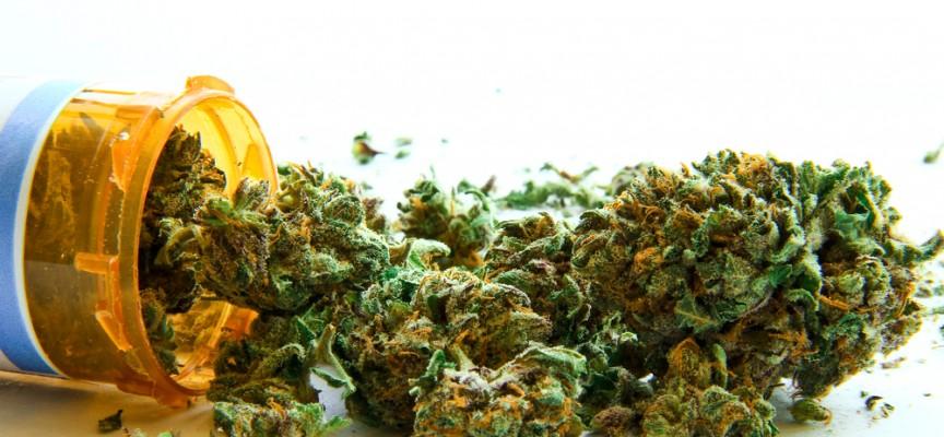 Efectos del cannabis, ¿se están aprovechando sus propiedades?