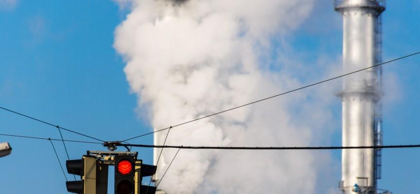 La contaminación engorda