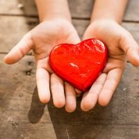 Día Mundial del Trasplante de órganos: España, un país muy solidario