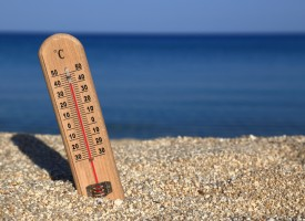 Las altas temperaturas favorecen los síntomas de las alergias