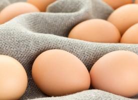 Consejos para evitar la salmonelosis