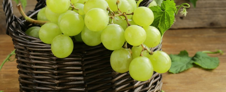 Tiempo de uvas, una fruta con muchas propiedades