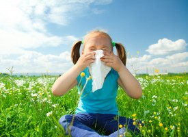 Nueva solución para prevenir los síntomas de la alergia nasal