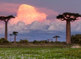 Expedición a Madagascar con fines solidarios