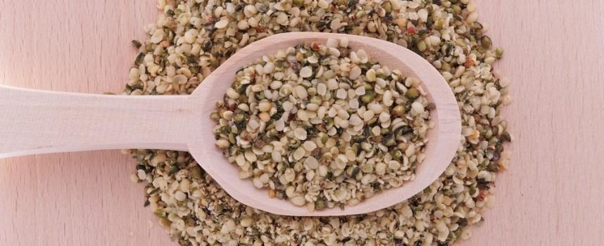 Semillas de cáñamo, un nuevo súper alimento