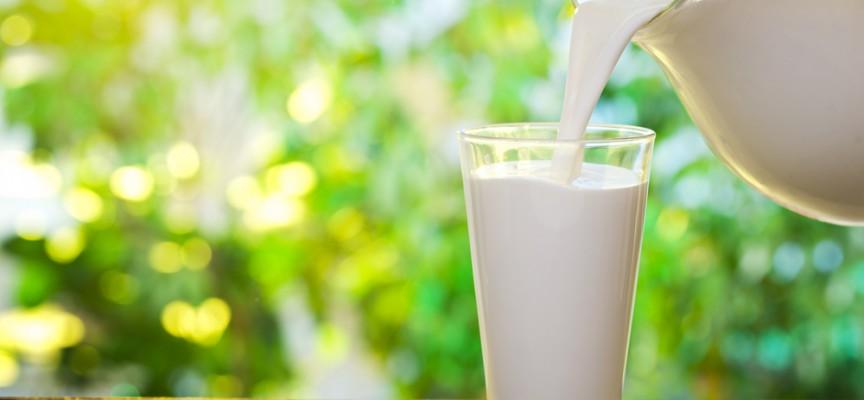 ¿Por qué la lactosa es tan difícil de digerir?