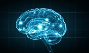 Neurogluten, gluten y sistema nervioso
