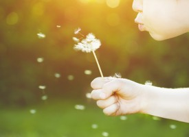 Llega la primavera y de nuevo las alergias