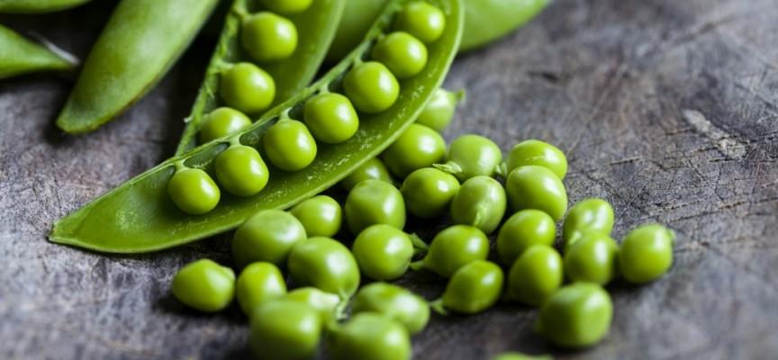 Los guisantes: nutrientes y beneficios para nuestra salud