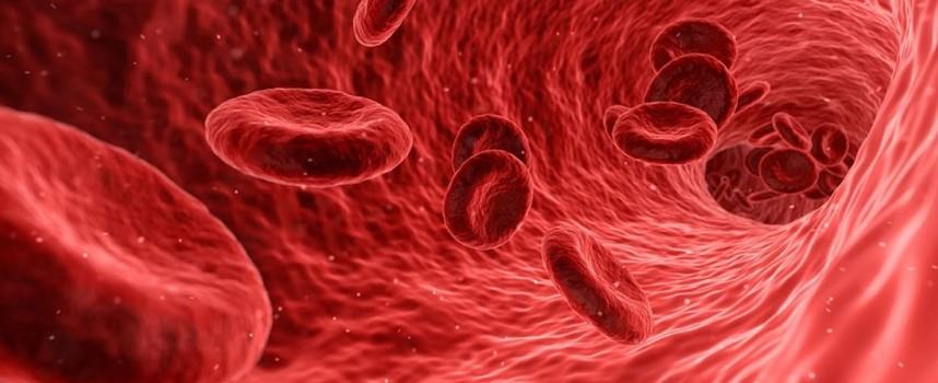 Novartis publica la encuesta I-Wish con pacientes de Trombocitopenia