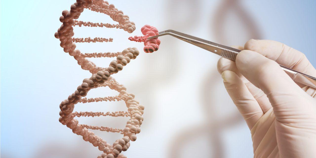 Del ADN a la proteína