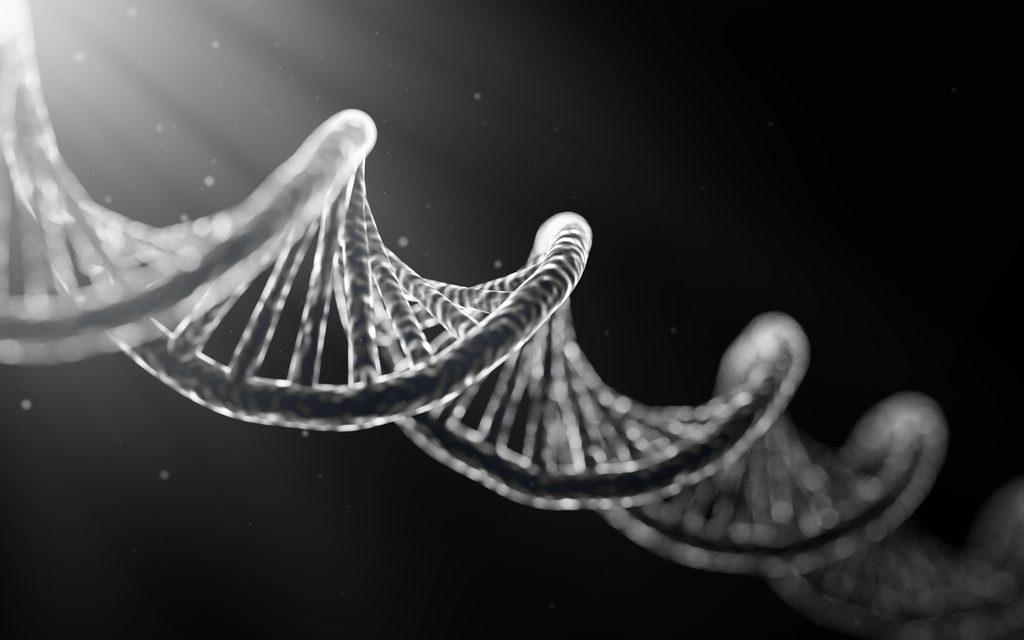 Qué es el ADN. Descubriendo nuestra verdadera identidad