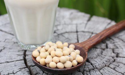 Soja, una legumbre muy polémica ¿es bueno comer soja?