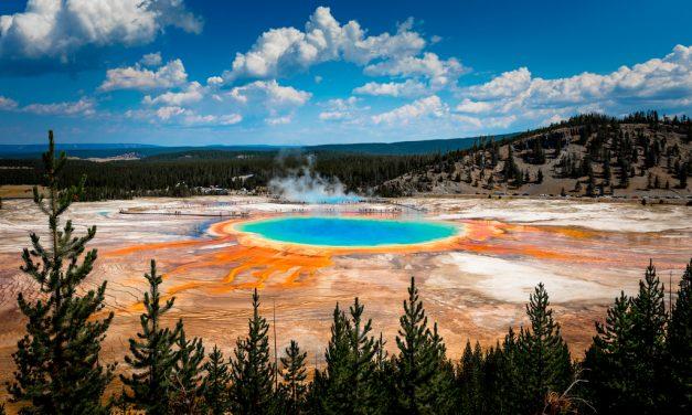 Sopa primitiva: el origen de la vida