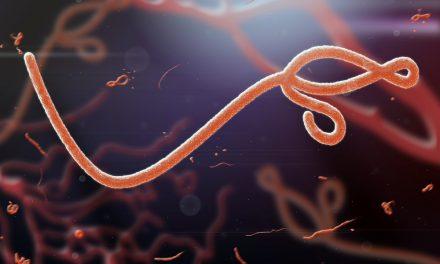 Novartis responde al brote de Ébola