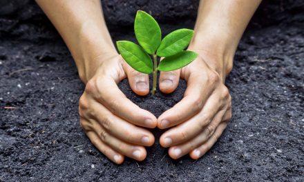 La necesaria Responsabilidad Social e Individual