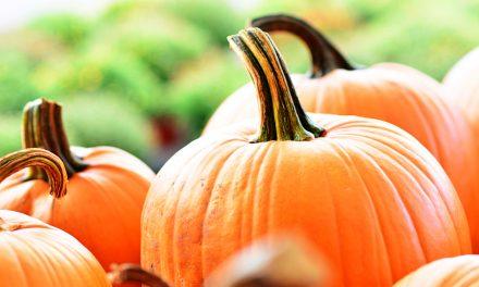 5 alimentos para el otoño