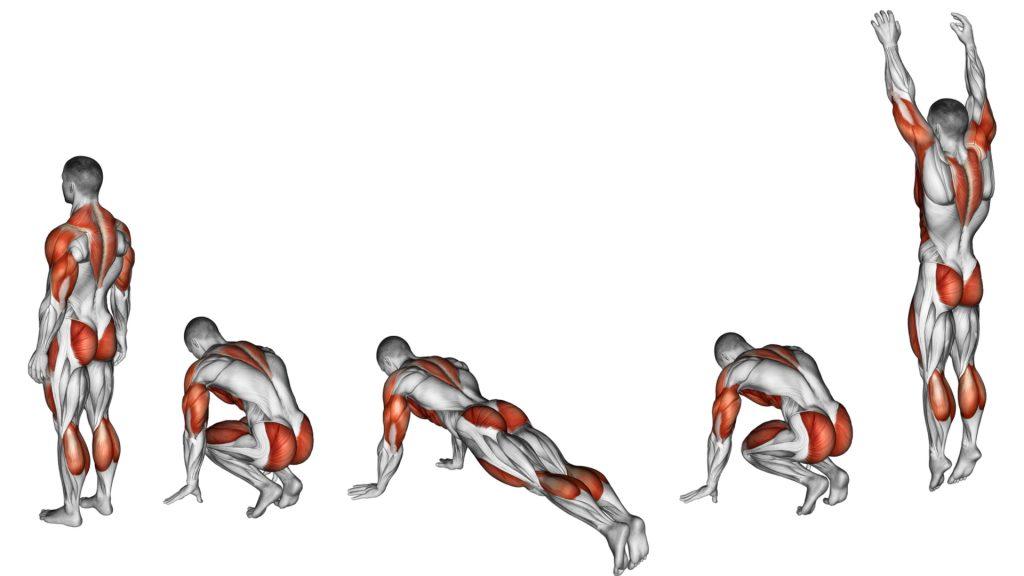 sentadillas musculos que trabajan